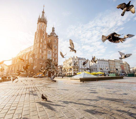 Przegląd krakowskiego rynku pracy w pigułce